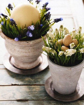 Spring-in-a-Pot Centerpiece