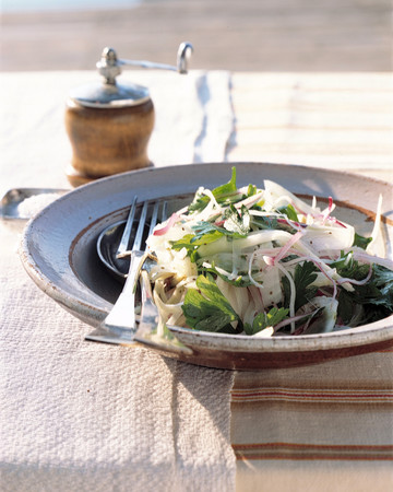 Fennel, Red Onion, and Parsley Salad