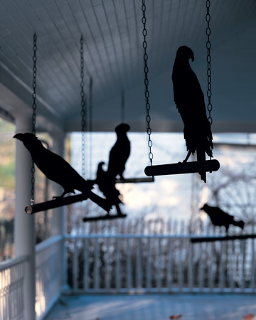Ravens-in-Waiting