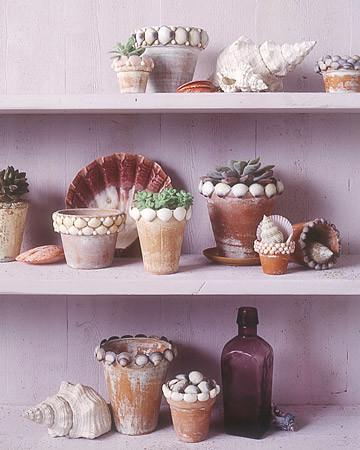 Shell Flowerpots