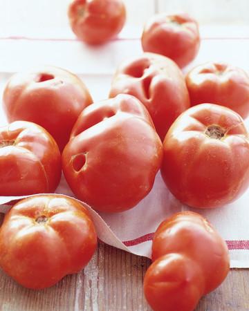 Tomato Basics