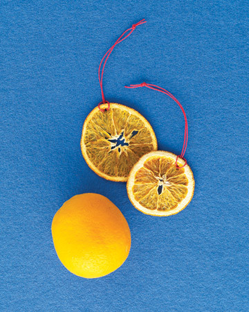 Citrus Slice Ornaments
