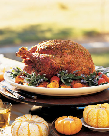 Salt-and-Pepper Grilled Turkey