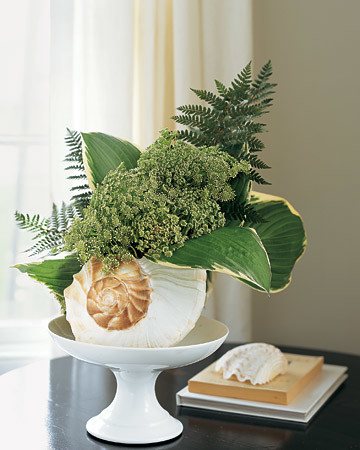 Floral Arrangement in a Seashell
