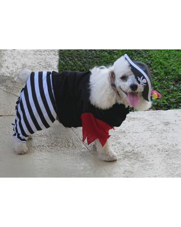 Ahoy, Mate!