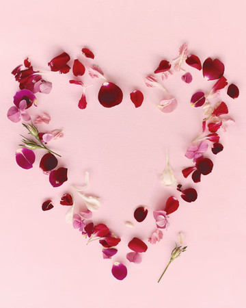 Scattering Petals for Your Valentine