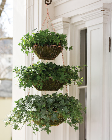 Hanging Wire Baskets Planter