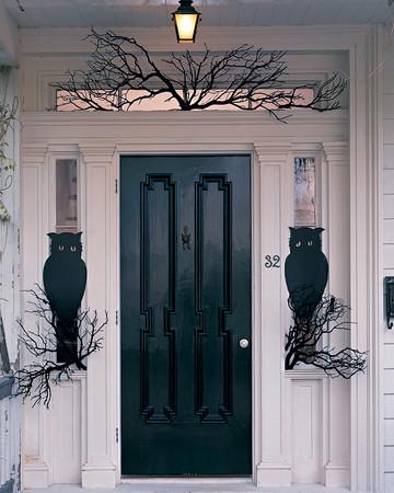 Owl Night Watchers
