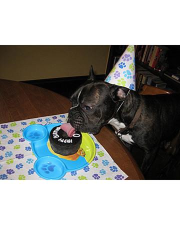 Oliver's 1st Birthday!