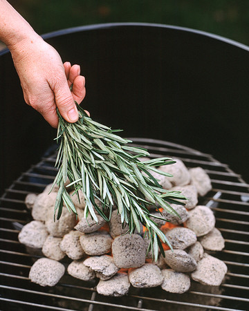 Rosemary Coals