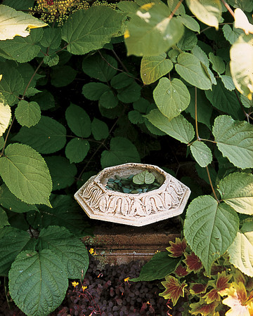 Simple Garden Water Dish