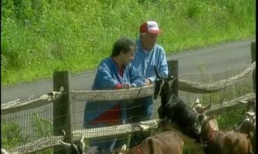 The Coach Farm