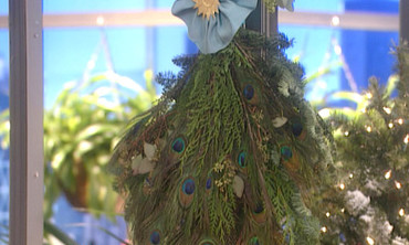 Peacock Evergreen Spray