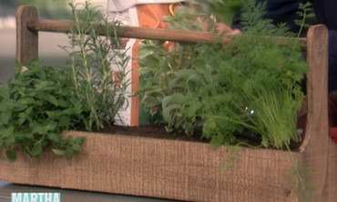 Herb Garden How-To