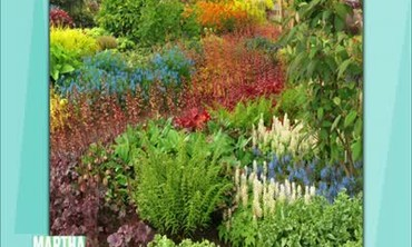Great Plant Breeds