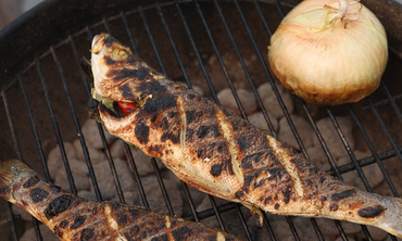 Grilled Fish How To