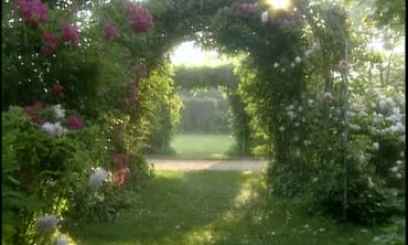 Martha's Rose Garden