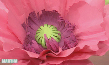 Video Paper Peony And Poppy Flowers Martha Stewart