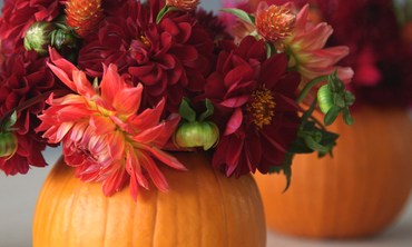 Pumpkin Vase How-To