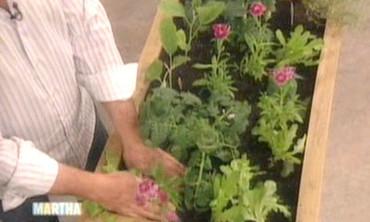 Organic Gardening, 2