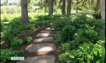 Video Planting Hostas In A Shade Garden Martha Stewart