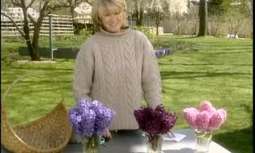 Hyacinth Arrangements