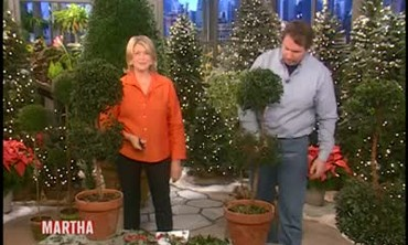 How to Shape a Topiary