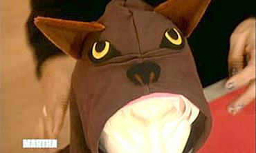 Hoodie Costumes, 2