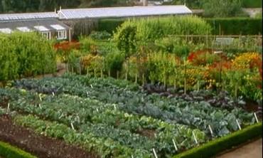 Dean Manor Garden Part 2