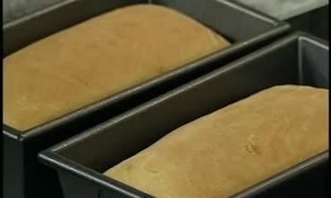 Potato Bread from Starter