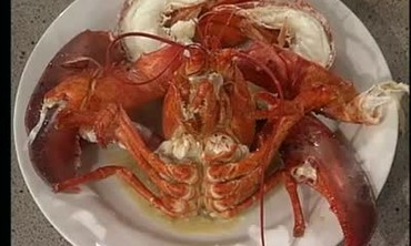 Traditional Boiled Lobster