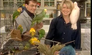 Good Things: Basic Bird Care