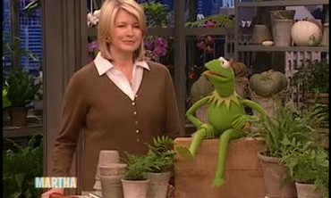 Kermit the Frog Performance