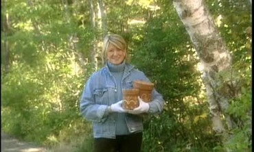 Passamaquoddy Birch Baskets