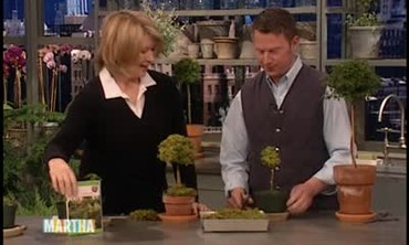 How to Make a Topiary, Part 2