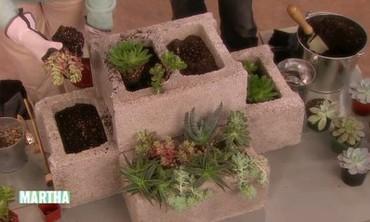 Modular Succulent Planters