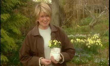 Wales Terra Cotta Plant Pots