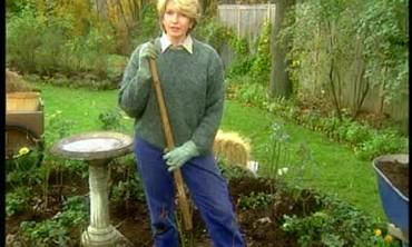 Winterizing Your Rose Garden