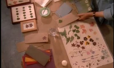 Crafts With Pressed Flowers