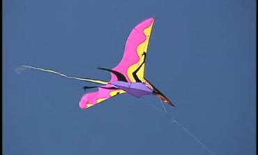 How to Fly a Variety of Kites