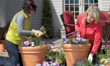 Ask Martha: Container Gardening