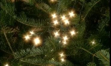 now playing - Christmas Tree Lights