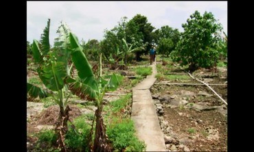 A Visit to Holey Farm of Nassau