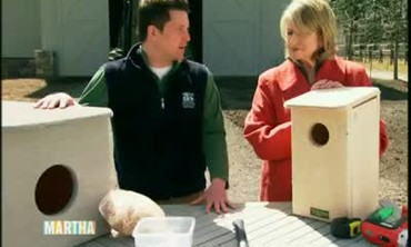 How to Build an Owl Nesting Box