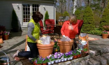 How to Create Beautiful Container Gardens