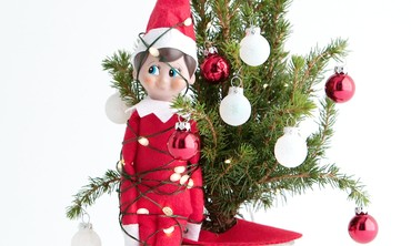 Great Ideas for Elf on the Shelf