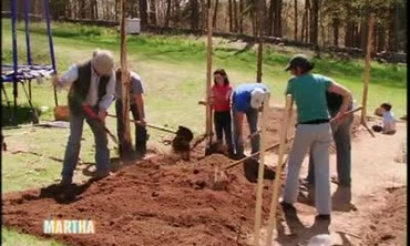 Watch More Videos From Planting Vegetables