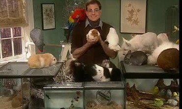 Marc Marrone Clears up Pet Myths