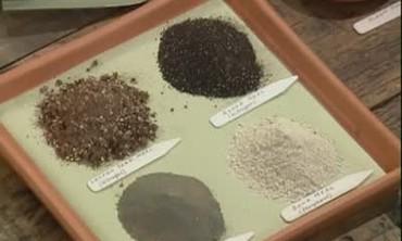Testing Garden Soil for Planting