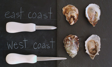 How to Shuck an Oyster Like a Pro
